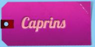 Caprins