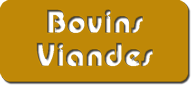 Bovins Viande